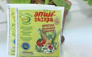 Эпин экстра применение для комнатных растений
